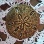 Sand dollar talking piece used in school restorative justic circles